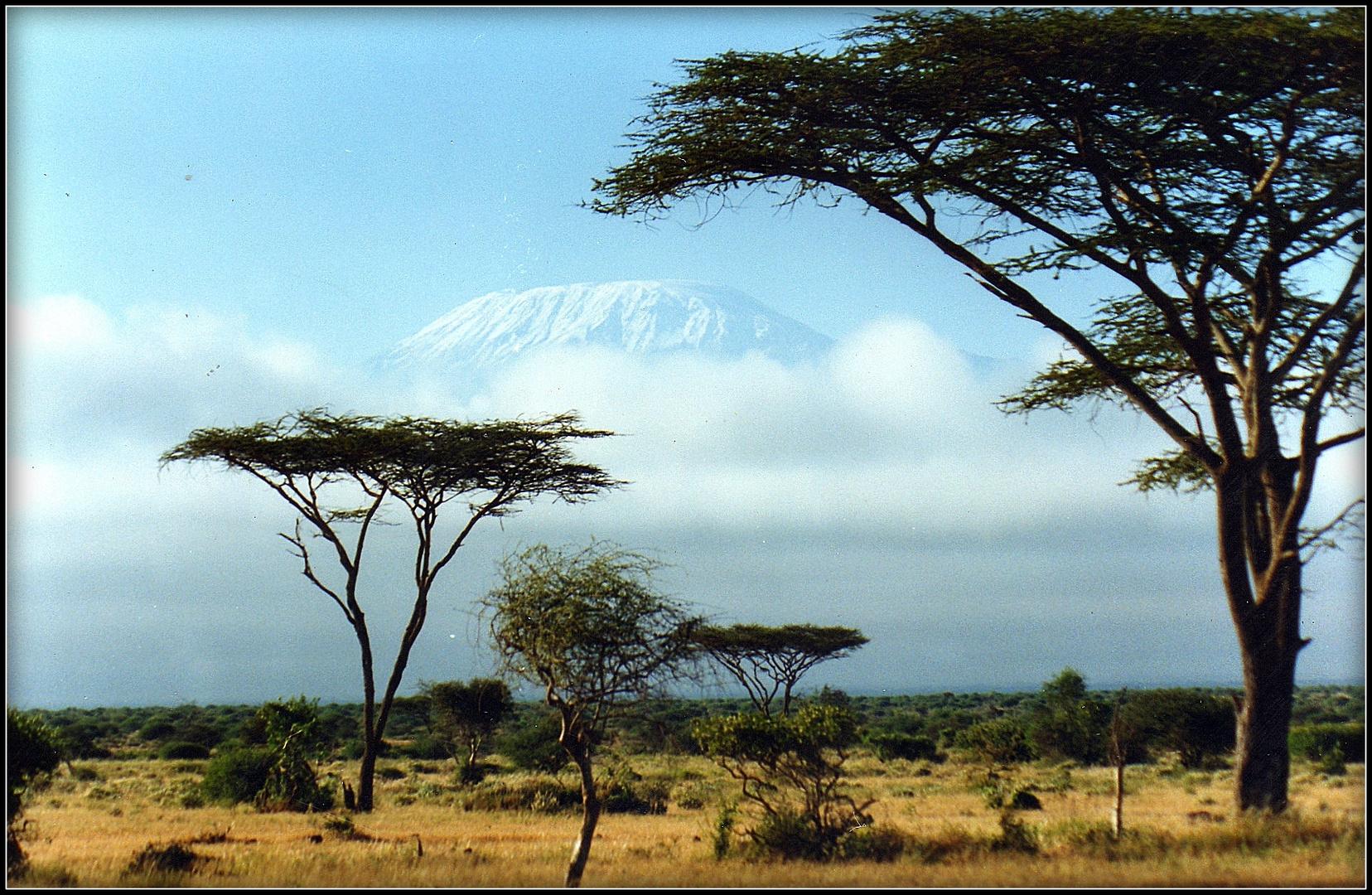 SAFARI au KENYA - 1 -