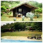 Safari Camp.......