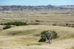 Sage Creek Basin