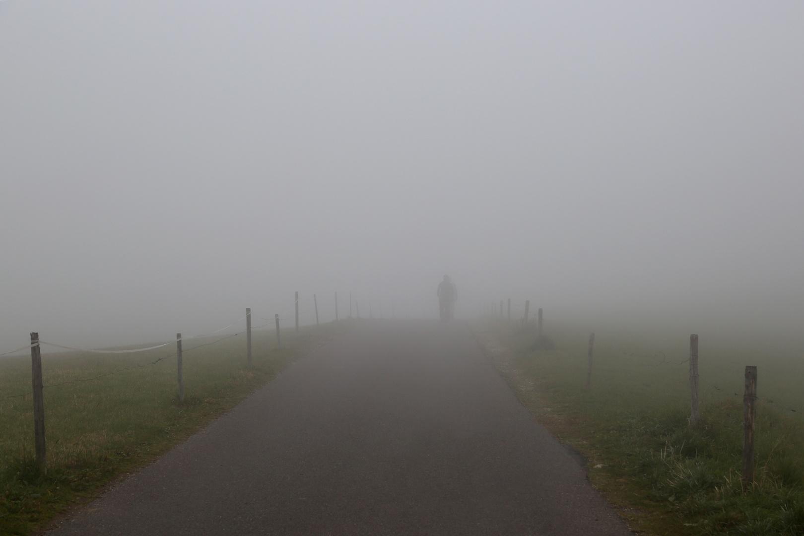 Sagome nella nebbia
