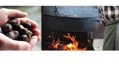 Sagra delle castagne