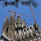 Sagrada ( Komplett-Ansicht )