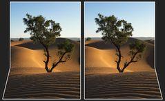 Sahara [3D]*