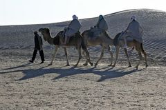 Sahara Explorer 3