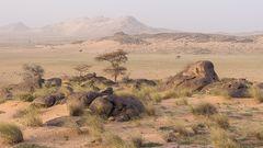 Sahara Landschaft 1