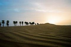 sahara - libia 2006