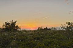 Saharamorgen