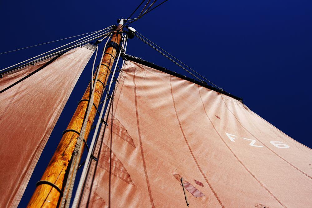 Sail...........