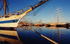 Sail Bremerhaven 1