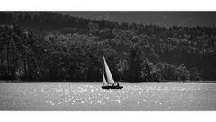 ~ Sailing ~