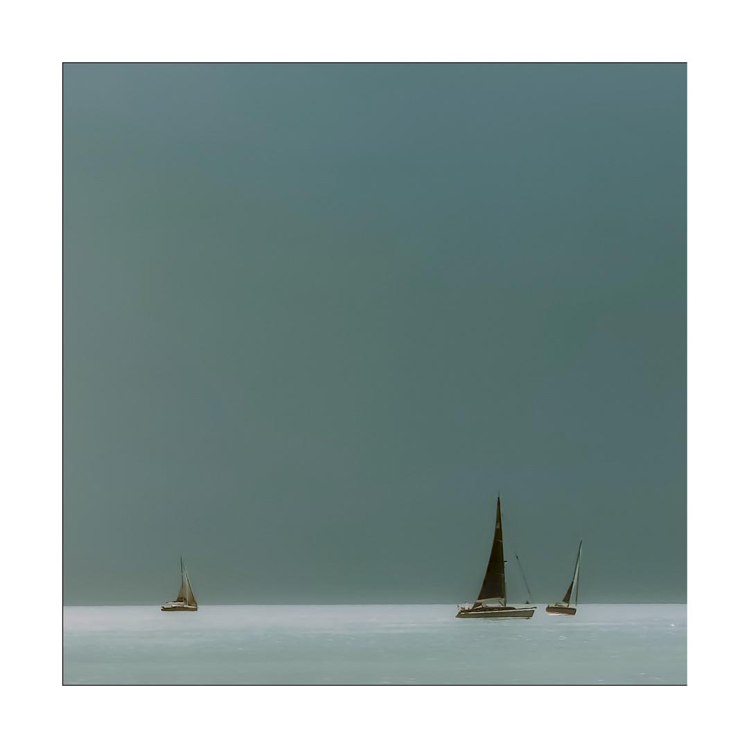 ~~~sailing~~~