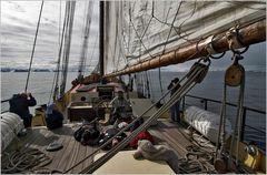 Sailing at 80° North...