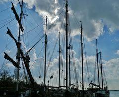 """sailing-feeling"""