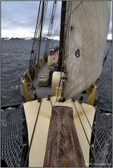 Sailing in the arctic...