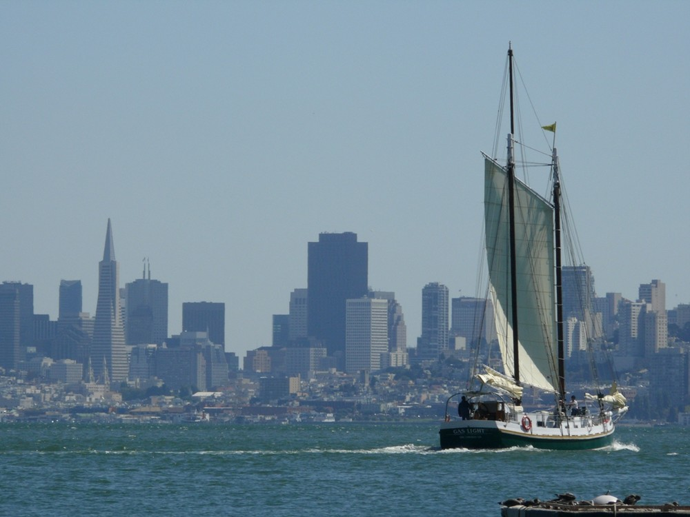 sailing in the bay area ....