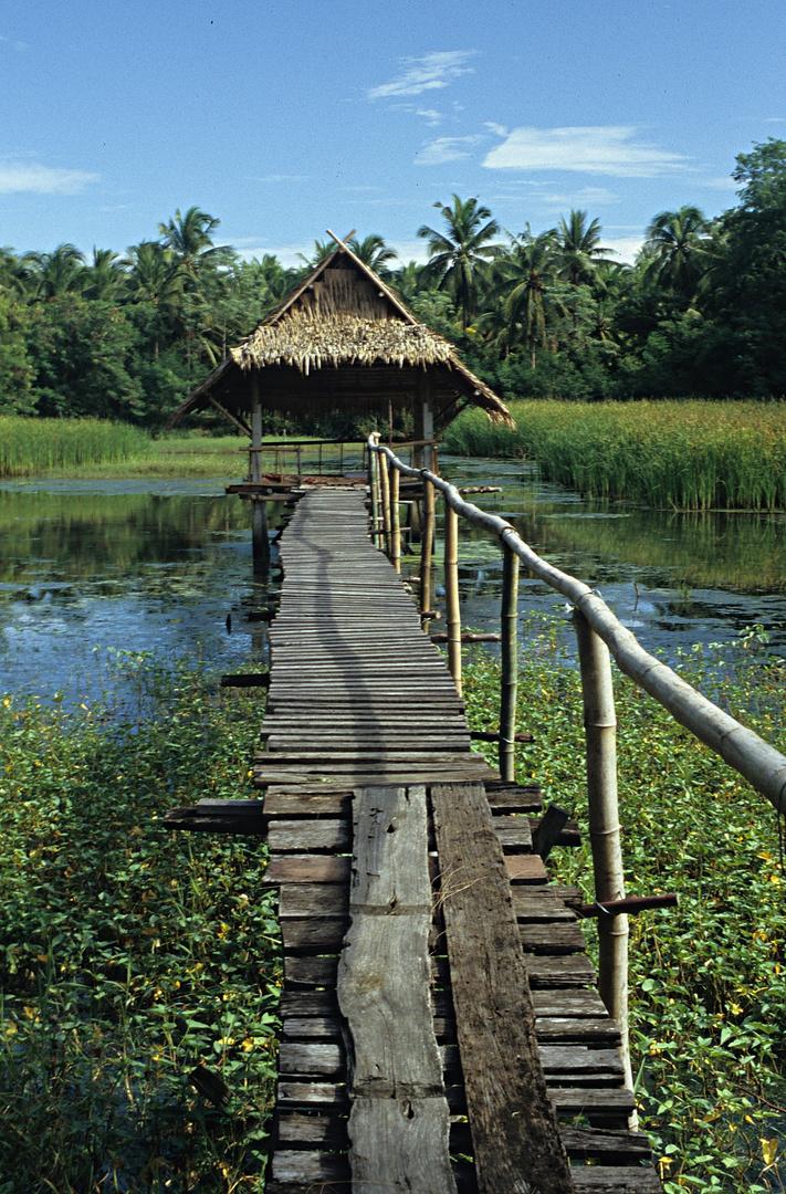 Sala im Teich der Dato-Farm