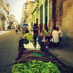 salades de rue