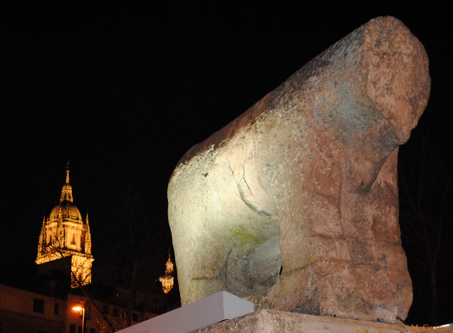 Salamanca( toro puente romano)