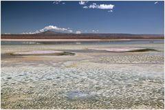 Salar de Atacama- Los Flamencos