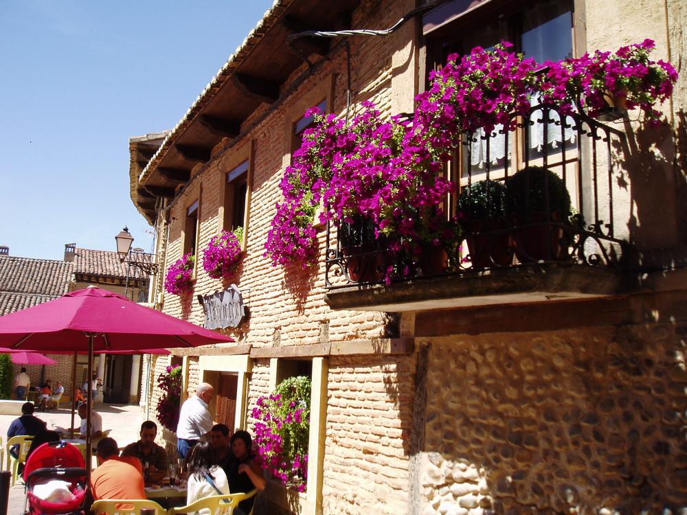 SALDAÑA (Palencia) 7
