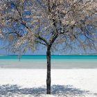SALENTO: Bianco Azzurro