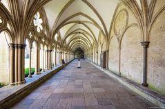 - Salisbury Cathedral (Kreuzgang) -