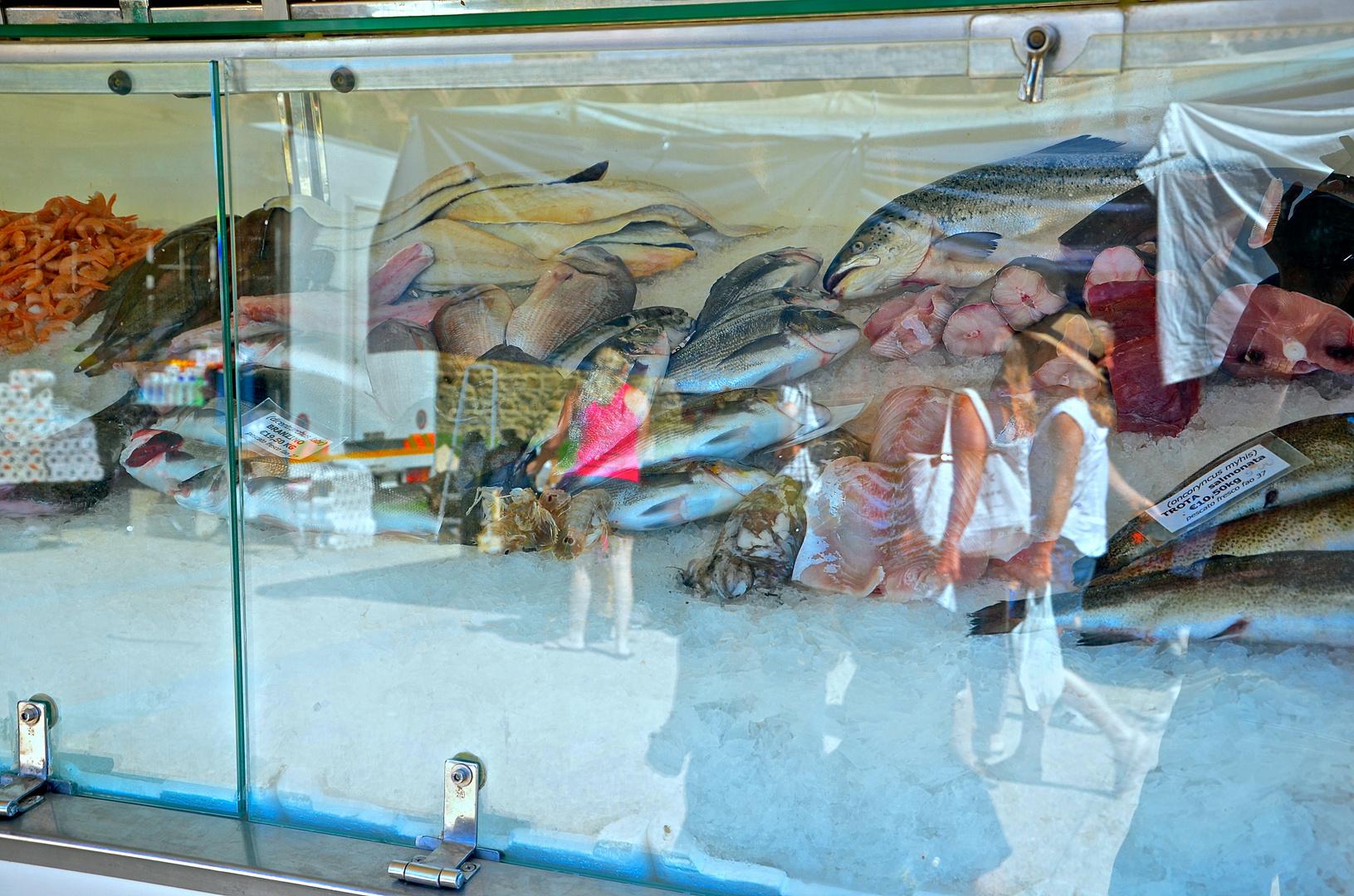 Salmonata hinter Glas