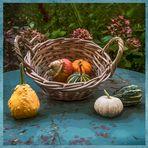 Salut l'automne