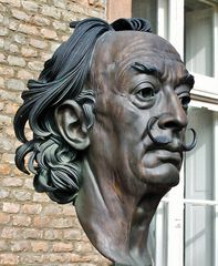 """ Salvador Dalí """