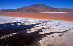 Salzsee mit Rotalgen im bolivianischen Altiplano
