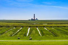 Salzwiesen mit Leuchtturm, Nordfriesland