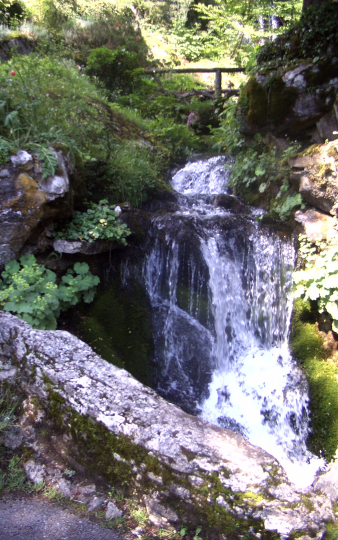 Samoëns - Die Jaysinia (5)