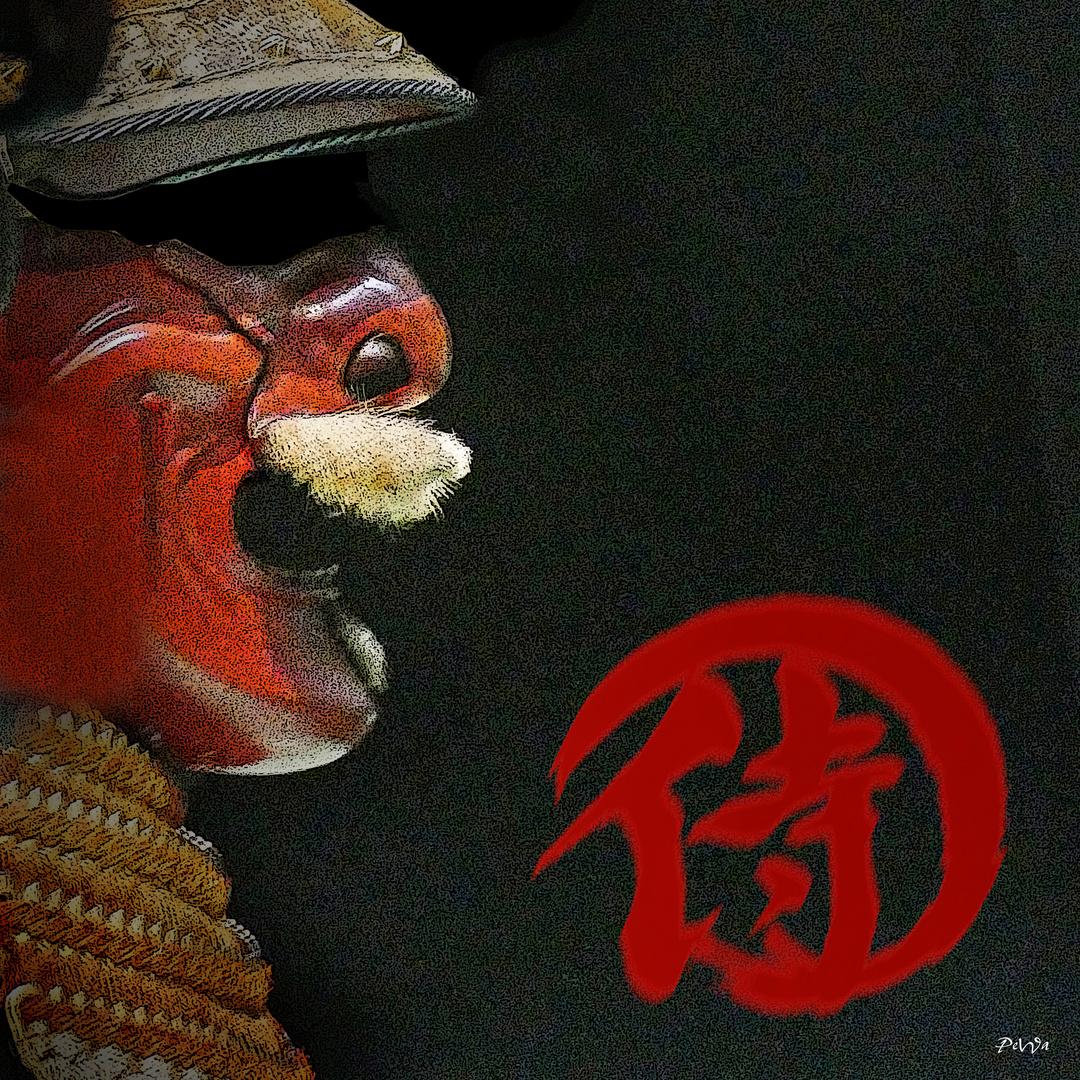 Samurai (11)