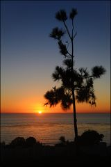 [ San Diego Sundown ]