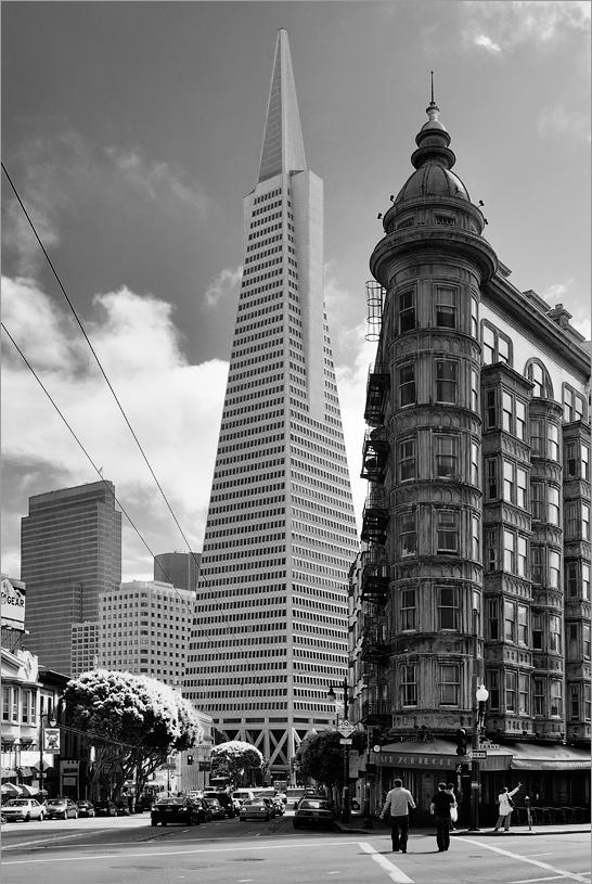 [ San Francisco ]