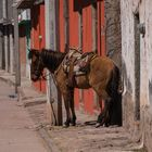 San Juan Benito Juarez, Bundesstaat Michoacan, Mexiko