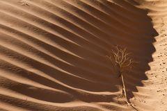 Sand - 4