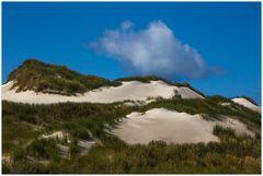 Sand - Dünen - Gras und Wolke...