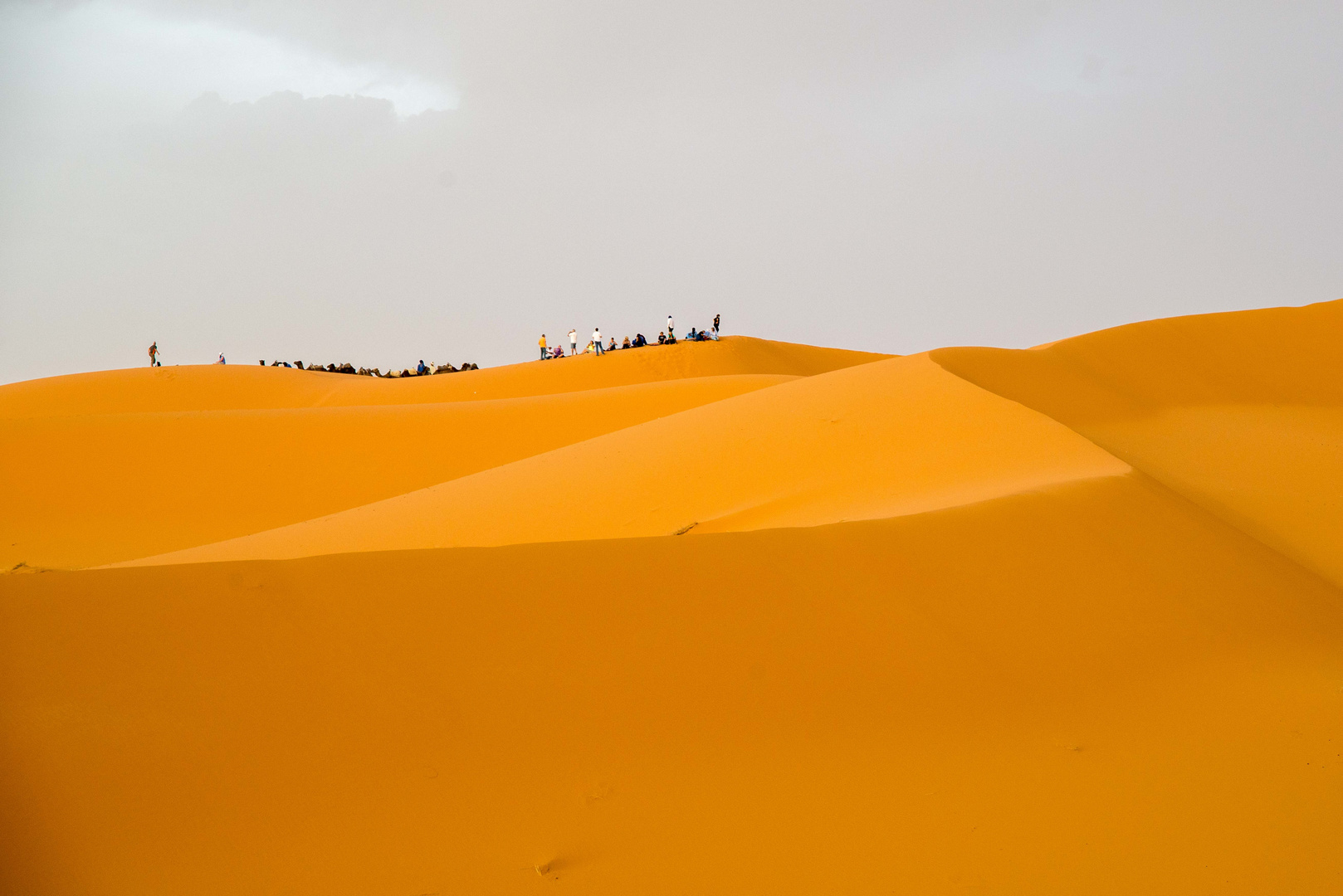 Sand dunes of the Sahara with camels and tourists