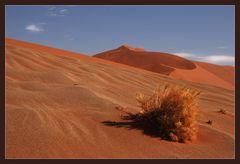 Sand..........