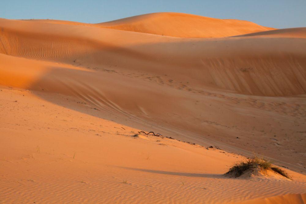 sand in orange