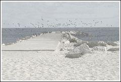 sand & sea thing