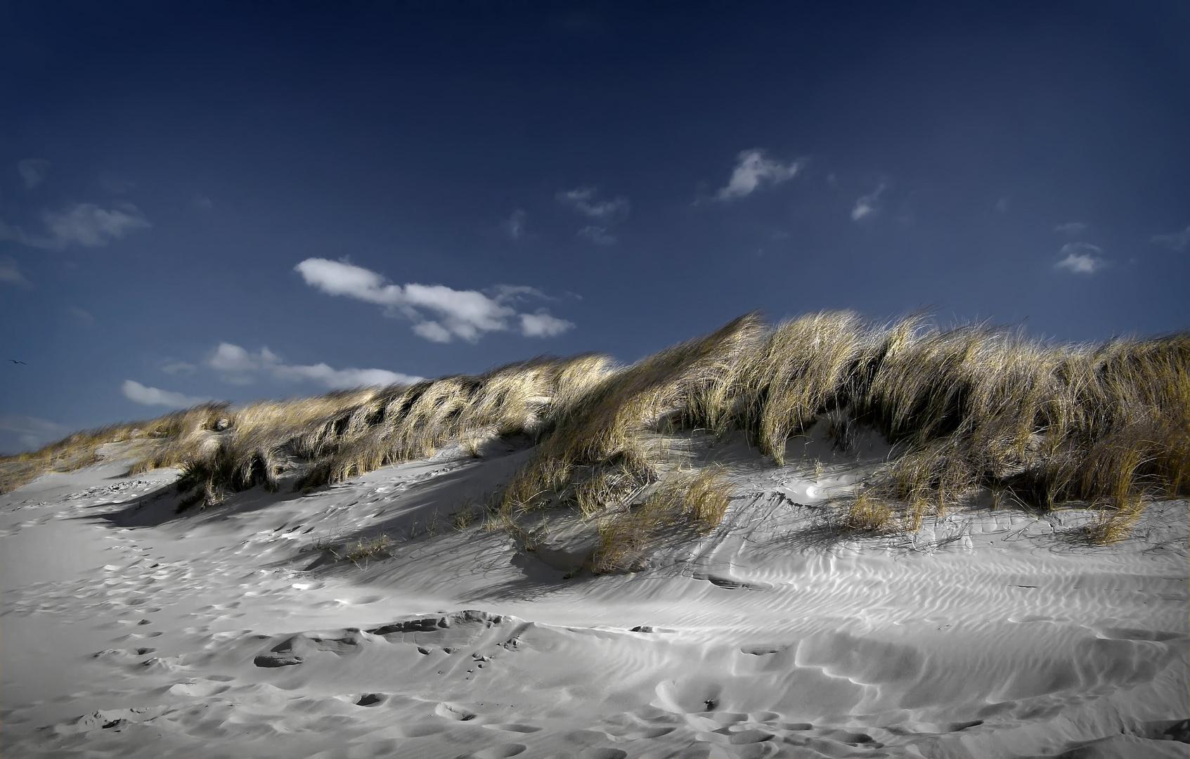 Sand und Dünen