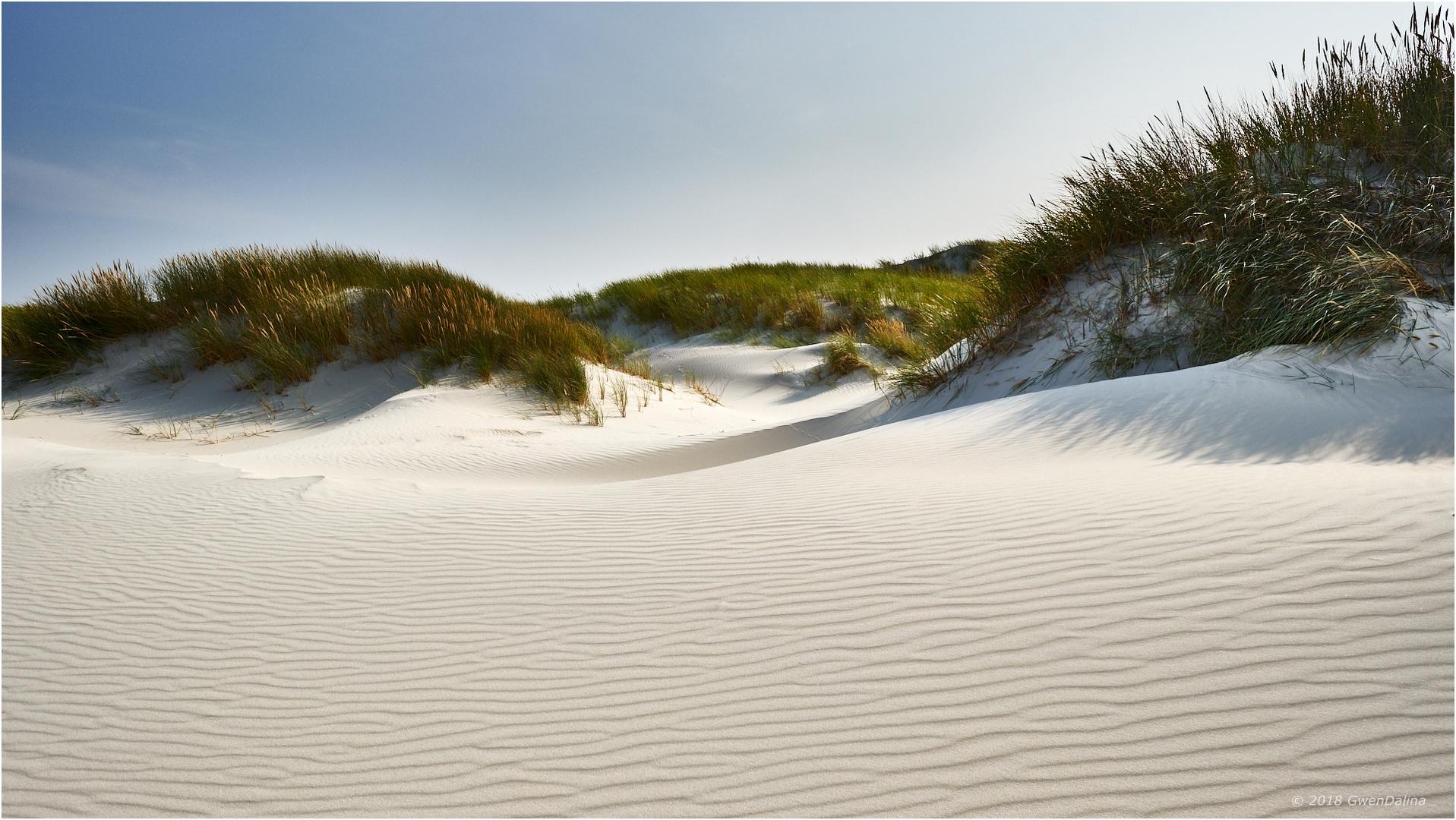 ::: Sand | Wellen 2.0 :::
