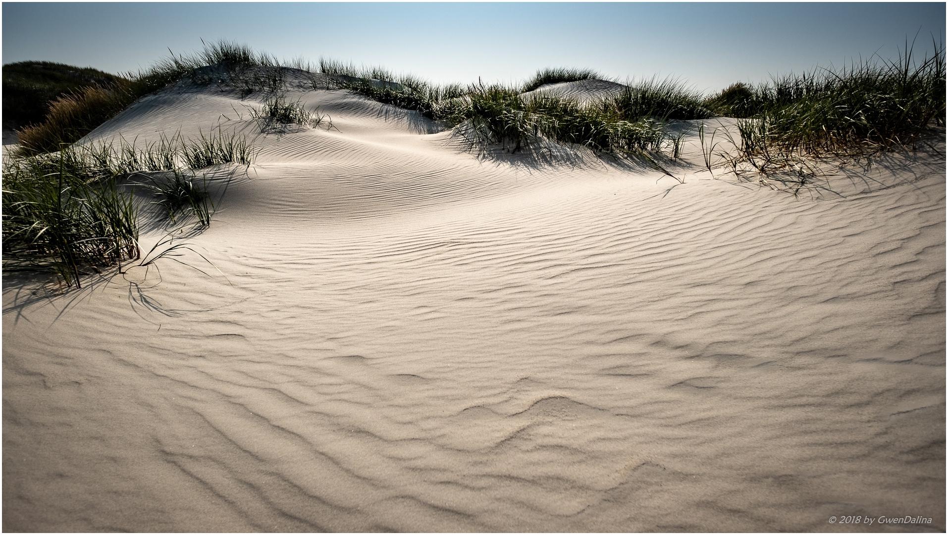::: Sand | Wellen :::