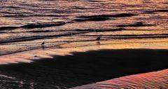 Sandbank BESETZER
