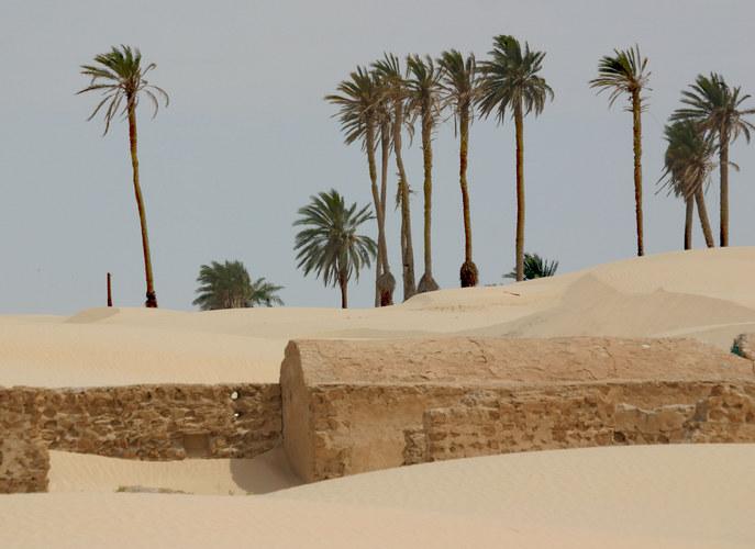 Sanddünen der Sahara