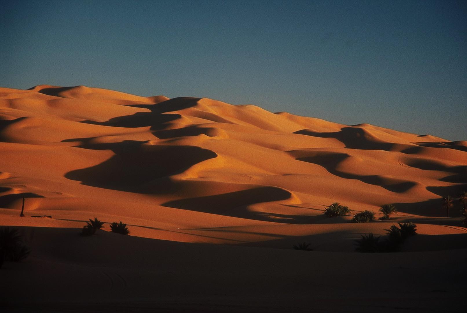 Sanddünen im Morgenlicht,wie sie schöner nicht sein können...