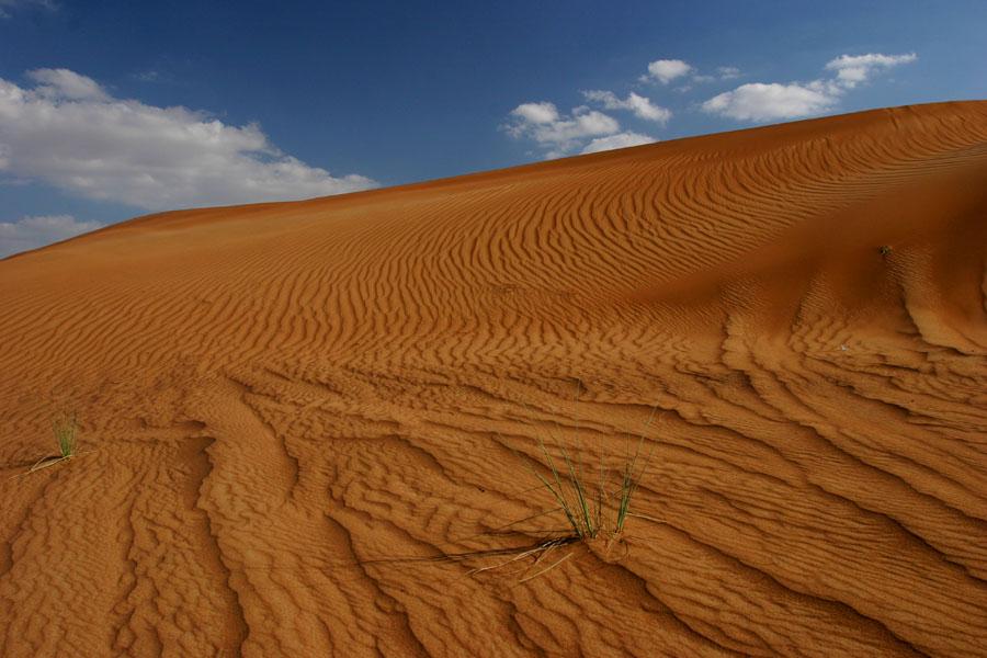 Sanddünen in Dubai, UAE