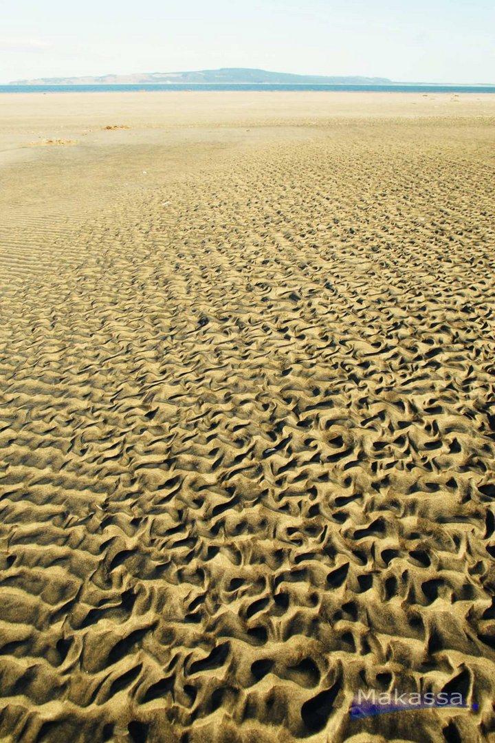 Sandleben
